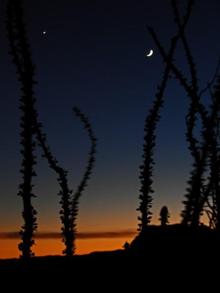 Tonight's Sunset, Venus and the New Moon, 10/7/13