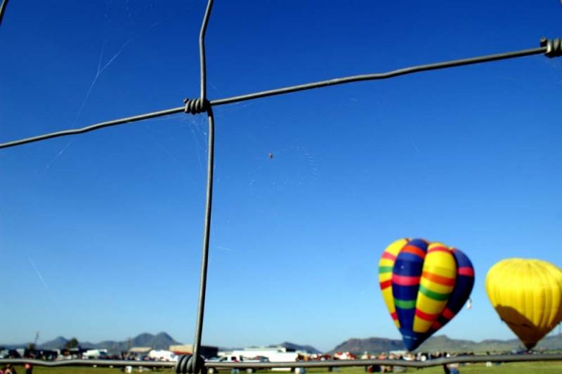 Arachnid, Air Balloons, Alpine
