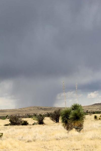 Rain on the Range