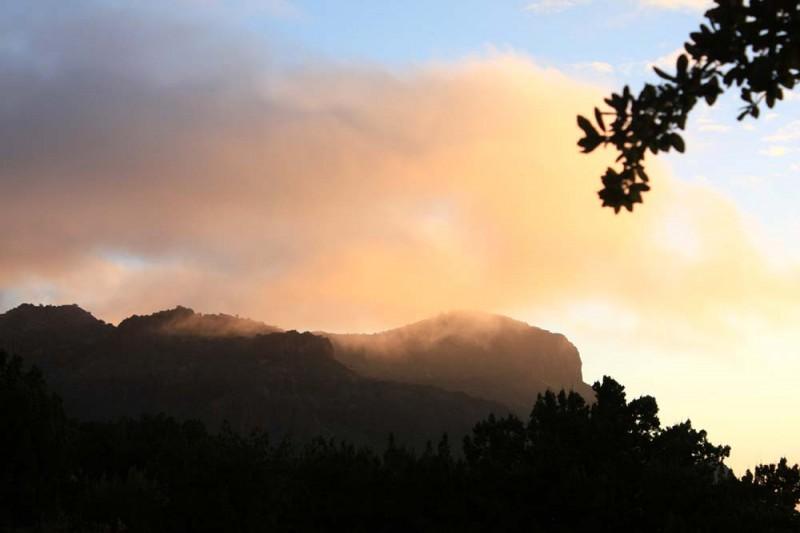 Morning Mist in Sunny Glen