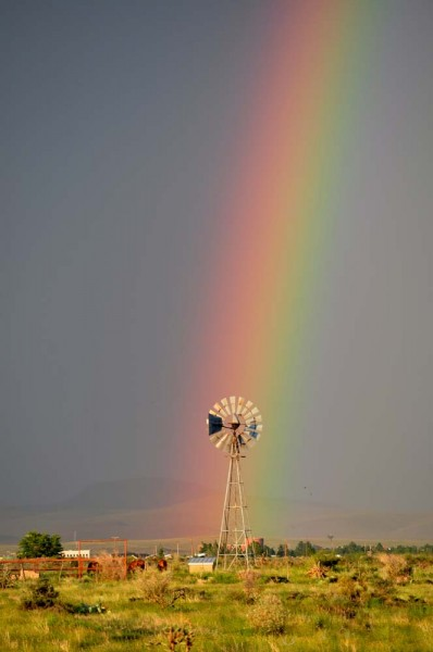 """More Precious than a Pot of Gold"" A turning windmill in Sunny Glen after a rain shower"